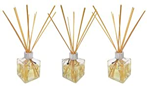 Greenair 3 Piece Reed Diffuser Dessert Collection Set, Apple Pie, Cinnamon Bun and Key Lime Pie