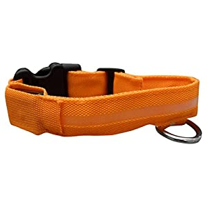 ASPCA LED Dog Collar, Small, Orange