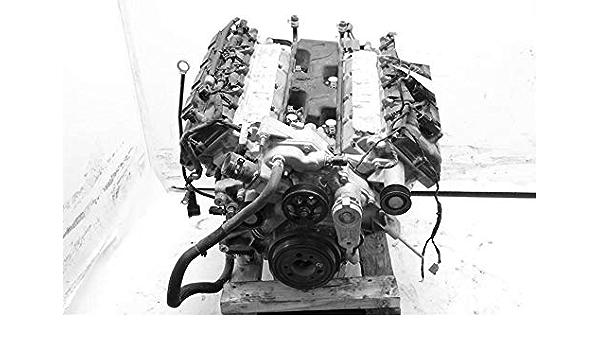 CTCAUTO Engine Parts Gasket Timing Cover Gasket Sets Fits for D odge R-am 1500 Van 5.9L