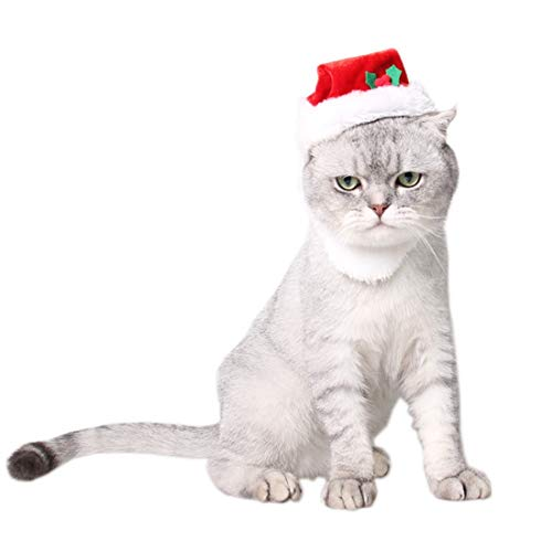 Happy-L Pet Supplies, Western Santa Claus Beards Pet Acrylic Comfortable Cats Dressing Up Christmas Hat Dog Christmas Hat with Bell ()