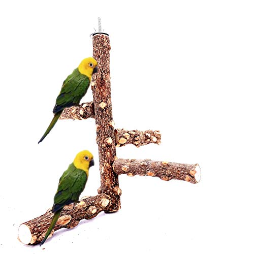 Borangs Bird Perch Natura Wood Stand Toy Branch for 3-4pcs Small Medium Parrots Cages Toy S