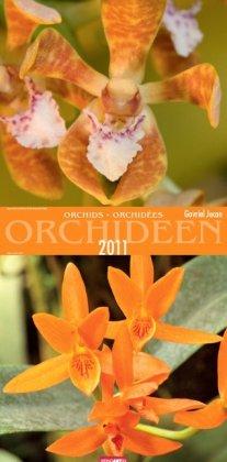 Orchideen 2011 / Orchids 2011 / Orchidées 2011