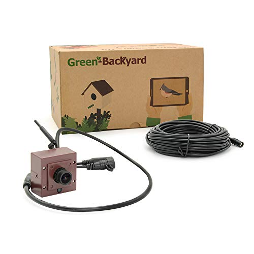 Green-backyard WiFi Bird House Camera – HD 1.2MP with Invisible Night Vision, Free Mobile App, Micro SD Card Slot, Video Motion Recording For Sale