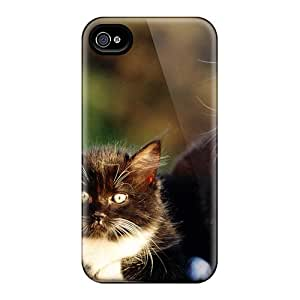 Series Skin Case Cover For Iphone 4/4s(twin Kittens)