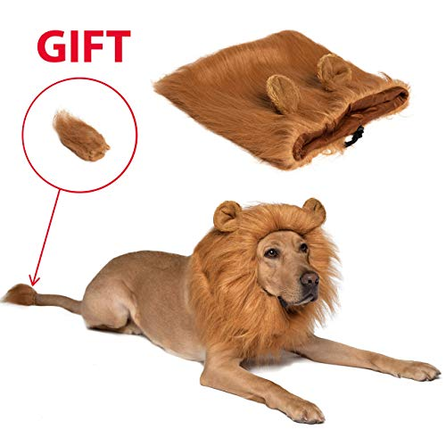 Dog Lion Mane Dog Wig - Pet Costumes for Large Dogs and Medium Dogs - Adjustable Pet Costume Lion Wig for Halloween with Gift - Lion Tail