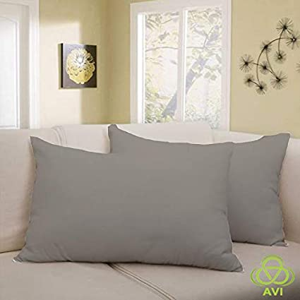 AVI California Size Smooth & Waterproof 1 Pcs. Pillow Protector- Light Grey- (20x 30inch)