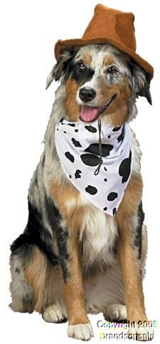 Amazon.com : Pet Western Dog Halloween Costume For Small Dogs ...
