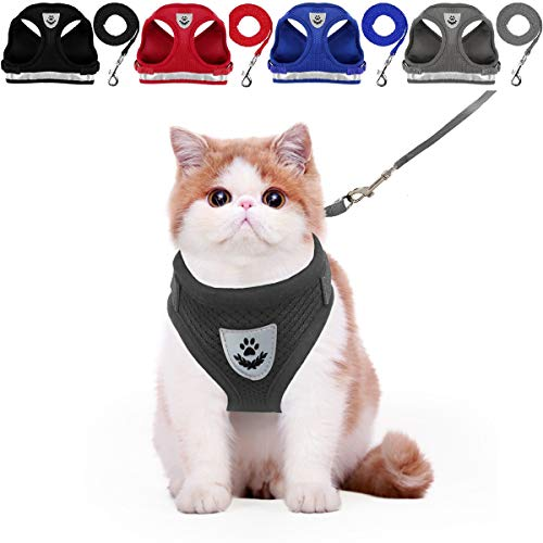 YujueShop Cat Harness and Leash Dog Harness Walking Adjustable Soft Mesh Pet Vest with Lead Re-Adjustable Pet Leash with Reflective Material and Metal Button Suit for Most Sizes of Pet (Black, XS)