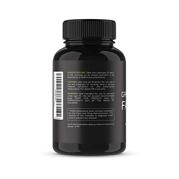 Health Shopping Nobi Nutrition Green Tea Fat Burner – Green Tea Extract Supplement with EGCG