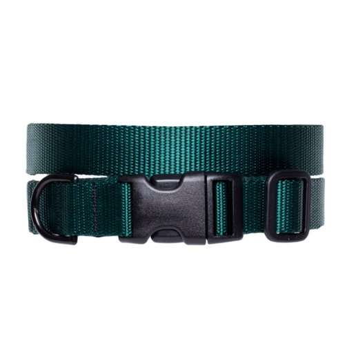 Max and Zoey 3/4-Inch Wide Basic Dog Collar, Medium, Green, My Pet Supplies