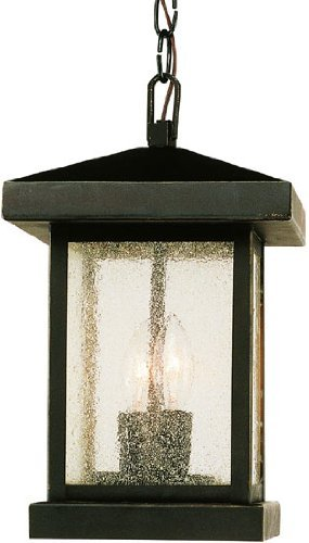 Trans Globe Lighting 45643 WB Outdoor Santa Cruz 13'' Hanging Lantern, Weathered Bronze by Trans Globe Lighting