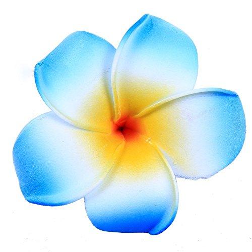 DreamLily Women's Fashion 3 Pcs Hawaiian White Plumeria Flower Foam Hair Clip Balaclavas for Beach (Blue)