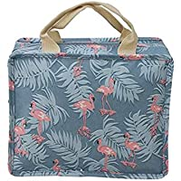 Insulated Lunch Box Food Container Tote Bag for School Picnic Work Office (Blue flamingo)