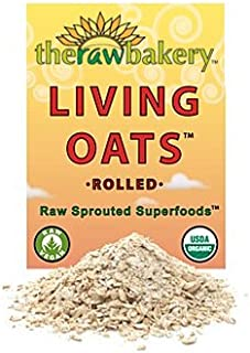 product image for The Raw Bakery - Organic Living Oats (10 oz.)