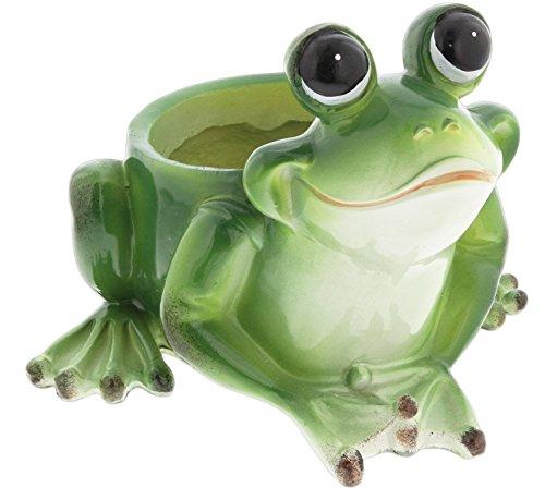 Joy Frog (Distinctive Designs Cute Frog Planter Resin 4.5