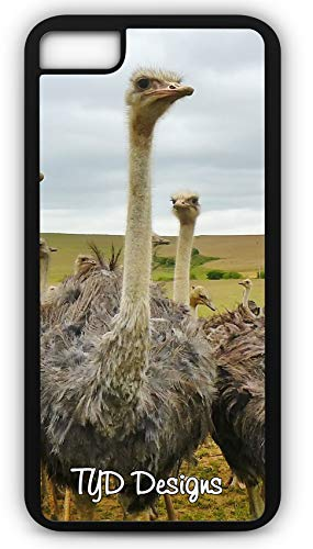 iPhone 8 Plus 8+ Case Bird Animal Nature Strauss Bouquet Ostrich Customizable by TYD Designs in Black Rubber