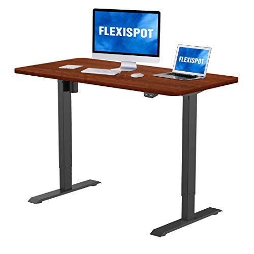 Flexispot Electric Standing Desk