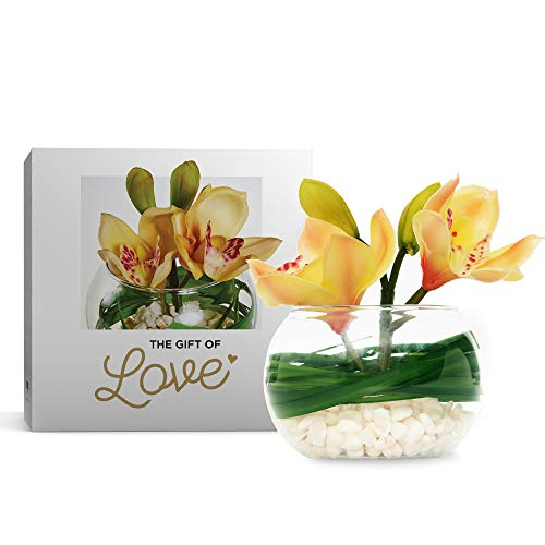 - Orchid in Glass Bowl with White Pebbles (Peach/Soft Pink)- Latex Real Touch Orchids- Hand Made-Petals Rich in Detail with Hand Painted Centres -Artificial Flowers- Gift Boxed