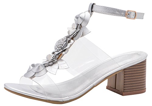 (Cambridge Select Women's Open Toe T-Strap Clear See Through Flower Mixed Media Chunky Stacked Block Heel Sandal (8 B(M) US, Silver))