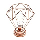 Botrong Creative Desk Lamp Iron Bedroom Decoration Photography Prop Lamp (Rose Gold)