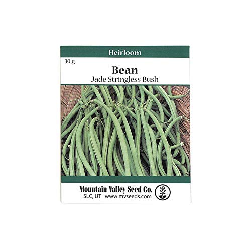 Mountain Valley Seed Company Jade Bush Bean Seeds - 30 Gram Packet - Non-GMO, Heirloom Green Bean Seeds - Vegetable Garden Seeds