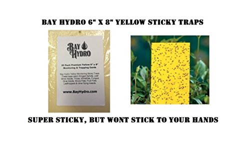 bay-hydro-6-x-8-yellow-sticky-straps-20-pack
