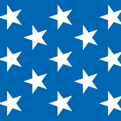 Patriotic Stars Backdrop (Patriotic Stars Backdrop Party Accessory (1 count) (1/Pkg))