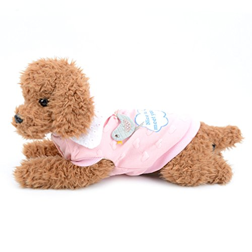 Ranphy Small Dog Cat Cute Fleece Lined T Shirts Bird Print Puppy Sweatshirt Cotton Apparel for Cold Weather Coat Dog Winter Clothes Pink - Bird Cotton Sweatshirt