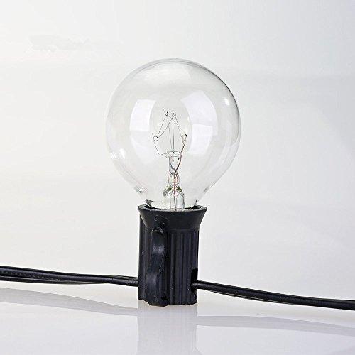 G40 Globe String Lights With 25 Clear Bulbs : G40 String Lights with 25 Clear Globe Bulbs UL listed, Vintage Backyard Patio eBay