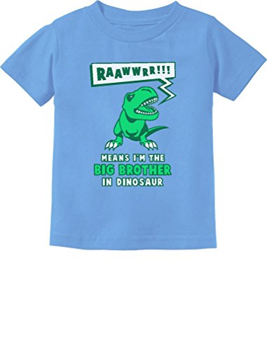 (Big Brother in Dinosaur Trex Big Brother Gift Toddler/Infant Kids T-Shirt 3T California Blue)