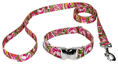 Country Brook Petz - Premium Dog Collar and Leash Set - Five Paisley Collection (Pink Paisley, 5/8 Inch, Small)
