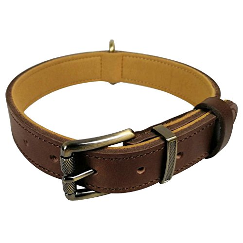 chede Luxury Real Leather Padded Dog Collar-Top Ltaly Cowhide for Small Medium Large Male Female Dogs (XL, Brown)