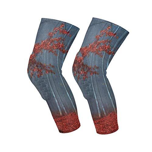 Knee Sleeve Red Leaves Blue Foggy Forest Full Leg Brace Compression Long Sleeves Pads Socks for Meniscus Tear, Arthritis, Running, Workout, Basketball, Sports, Men and Women 1 Pair