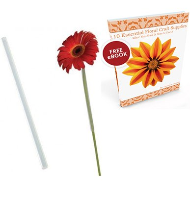Daisy Checkerboard (Gerbera Daisy Floral Arranging Straws Tubes 3/8
