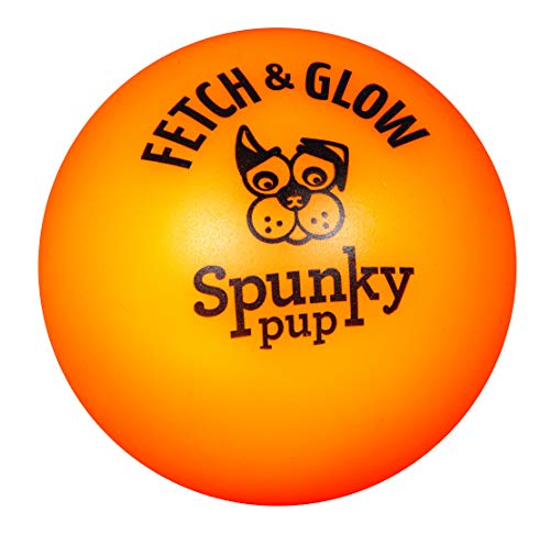 Flashing Floating - Fetch & Glow Ball Medium