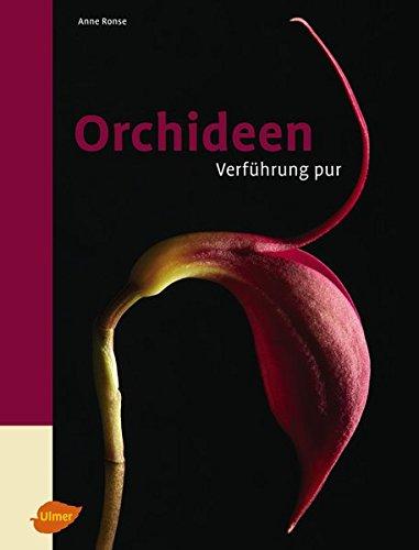 Orchideen - Verführung pur
