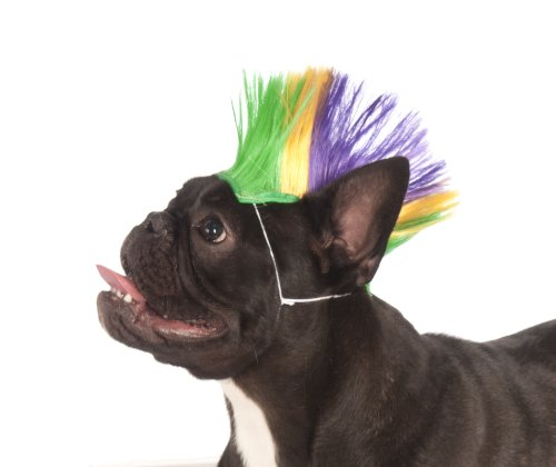 Rubie's Mardi Gras Pet Mohawk Wig, Small/Medium, Multicolor