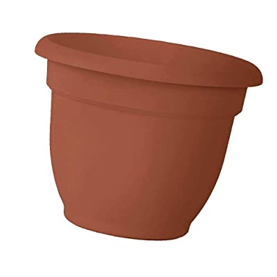 Bloem 12 Inch Ariana Planter with Self-Watering Grid, Color Clay (Update Version): Kitchen & Dining