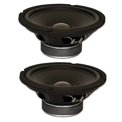 Goldwood Sound, Inc. Stage Subwoofer, Rubber Surround 8