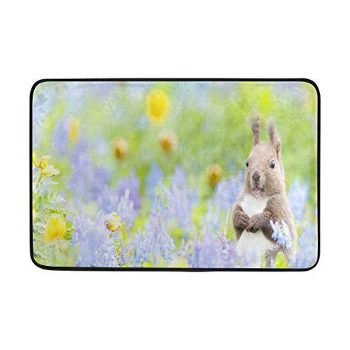 Lisang Flowers Squirrel Door Mat Decorative Door Mat Indoor Outdoor House Doormat High Traffic Areas Non Slip Machine Washable Door Mats 23.6(L) x 15.7(W)