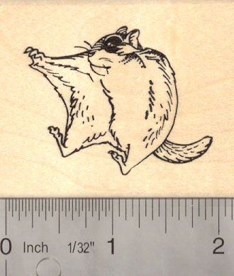 Sugar Glider in Flight Rubber Stamp