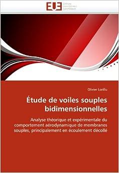 Book Étude de voiles souples bidimensionnelles: Analyse théorique et expérimentale du comportement aérodynamique de membranes souples, principalement en écoulement décollé (Omn.Univ.Europ.)