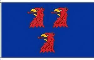 Bandera Pase Walk–150x 250cm–Bandera y