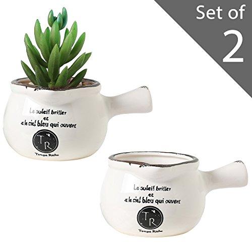 Miniature Succulent Planter Pots Set of 2 White Ceramic French Country (Crock Mug)