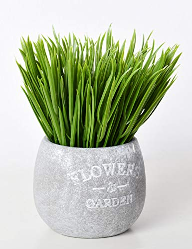- AlphaAcc Mini Plastic Wheat Grass Potted Plant 7 inches Natural Looking Faux Greenery Topiary Shrubs for Home Office Decor