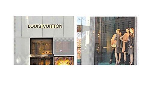 Amazon.com: Vuitton Wall Decor, Fashion Store Art Print Set of 2 ...
