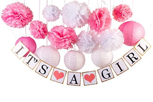 Baby Girl Shower Banner Flower Lantern Decorations -