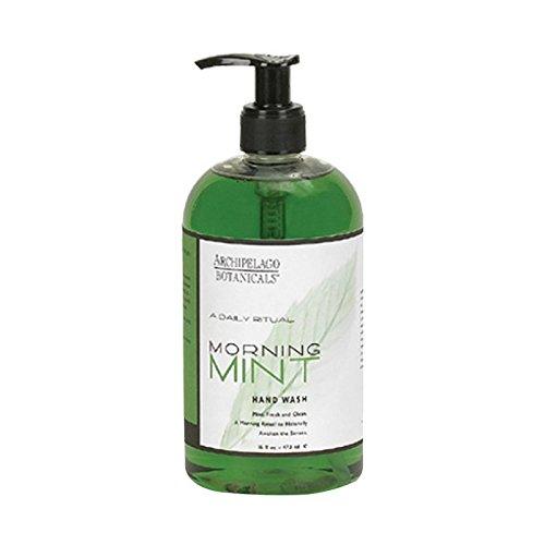 archipelago-botanicals-morning-mint-hand-wash-17-fl-oz
