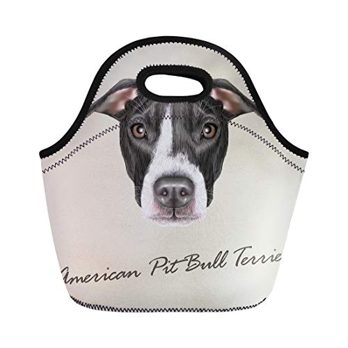 (Semtomn Lunch Bags Black Breed American Pit Bull Terrier Portrait of Dog Neoprene Lunch Bag Lunchbox Tote Bag Portable Picnic Bag Cooler Bag)