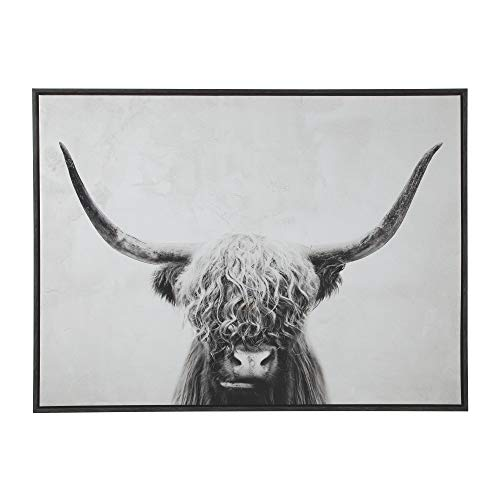 Signature Design by Ashley A8000258 Pancho Wall Art, Black/White ()